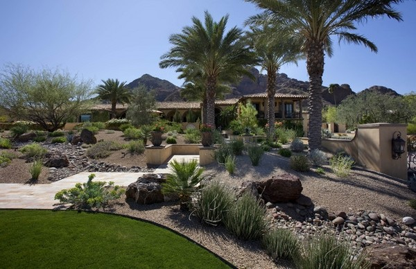 desert landscaping ideas basic