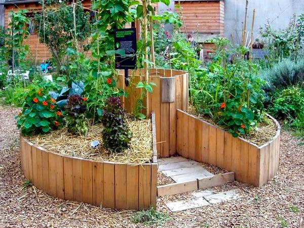 Diy Raised Vegetable Garden Ideas