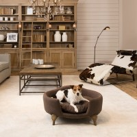 Fancy dog beds  comfortable and trendy pet furniture ideas