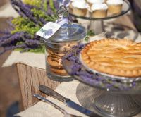 Rustic bridal shower  charming decorating ideas for your ...