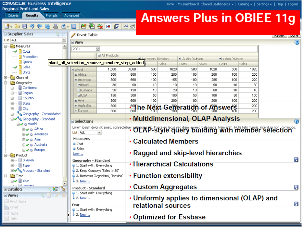 OBIEE 11g - A Gospel about Whirlpool in BI Space (2/6)
