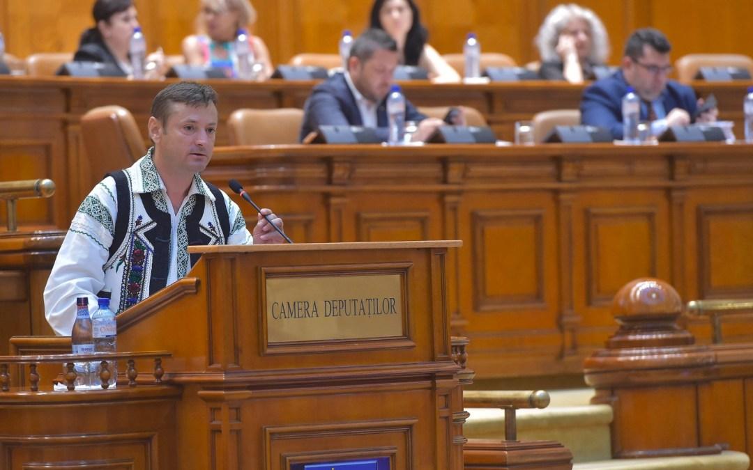 """Ionel Palăr: ,,Exercițiu de lașitate și ipocrizie la vizita premierului Viorica Dăncilă în Bacău"""""""