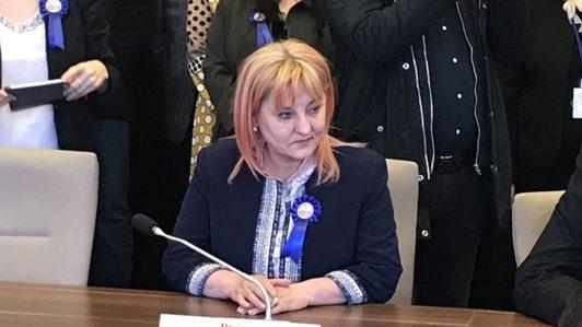 """Deputatul PNL Tudorița Lungu: ,,Copiii mai mici trei ani, victimele unui nou experiment al primarului  Necula!"""""""