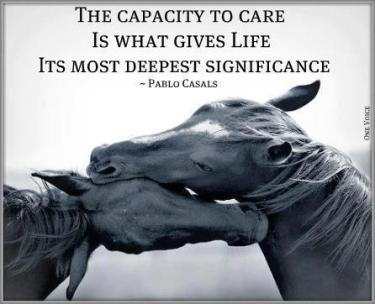 Pablo Casals - The capacity to care is what gives life its most deepest significance.