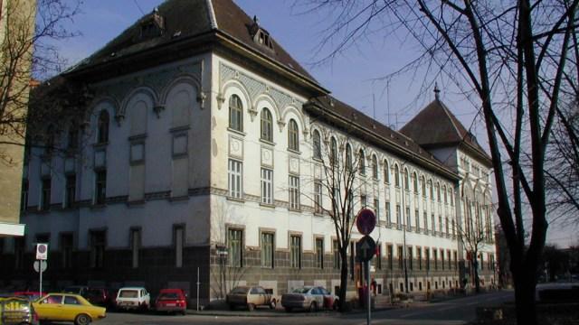 Primăria Timișoara