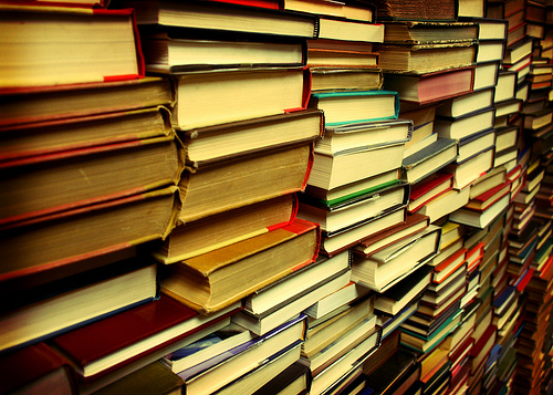 La Dumbrăvița se dorește înființarea primei biblioteci publice