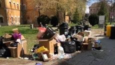 Rampă de gunoi în centrul Timișoarei