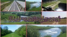Acțiune de ecologizare în Timiș