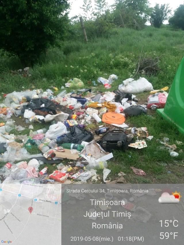 Primăria Timișoara, amendată cu 15.000 de lei de Garda de Mediu