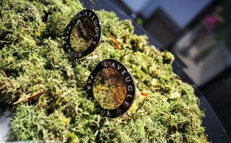 Ultima colecţie de ochelari GUCCI se va lansa la Timişoara