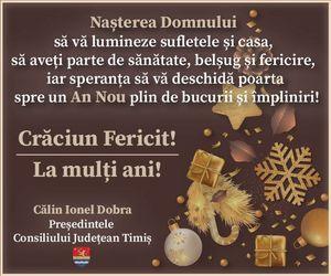 felicitare Craciun CJT