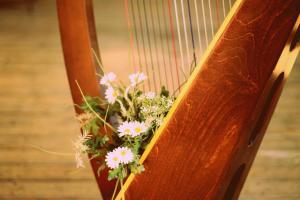 harpwithflowers