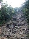 上雞公山的碎石路