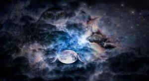 owl-moon-fairy-stars