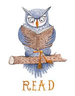 Read: Owl