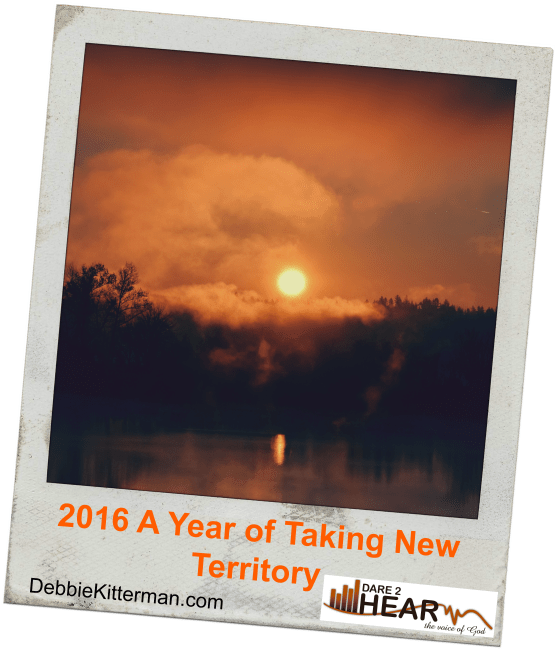 2016 A Year of Taking New Territory