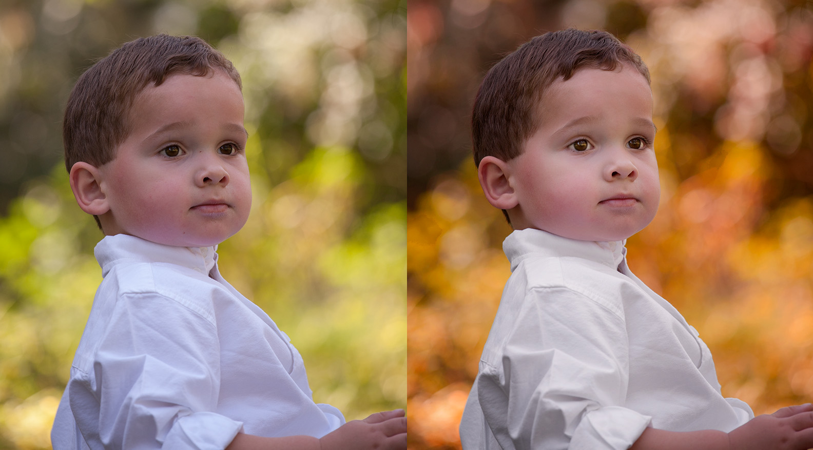 Summer to Autumn in 8 Minutes - Complete Autumn Photoshop Tutorial Video.