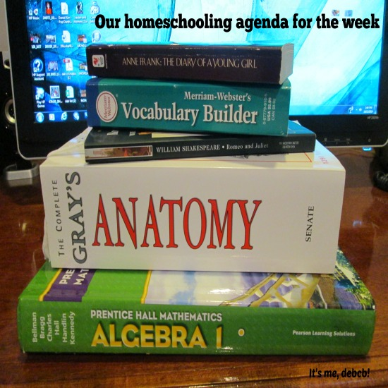 Our homeschooling agenda for the week