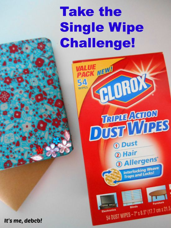 Take the Single Wipe Challenge- It's me, debcb!