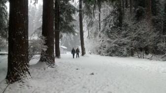 winterwonderland2016_i