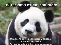 Dile NO al racismo