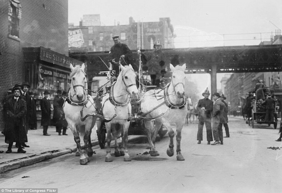 2DA0E11C00000578-3282754-The_fire_department_trots_down_the_street_on_horse_drawn_cart_a_-a-29_1445587040671
