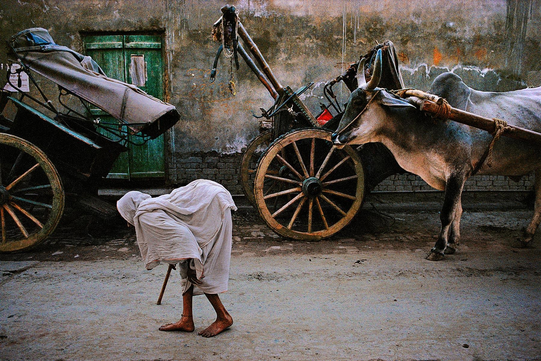 INDIA-10212_web