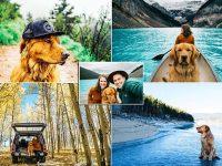 Conoce las increíbles aventuras de Aspen este precioso golden retriever que viaja con sus dueños por toda América del Norte y se está convirtiendo en una sensación de Instagram