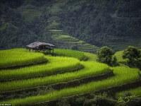 Impresionantes imágenes captan las tradiciones atemporales y la sorprendente belleza de Vietnam