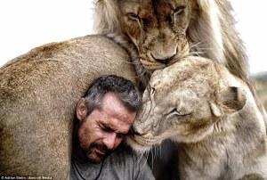 Imágenes increíbles muestran la unión entre un hombre y una manada de leones.