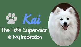 Kai - The Little Supervisor & My Inspiration - photo of my American Eskimo Dog Kai