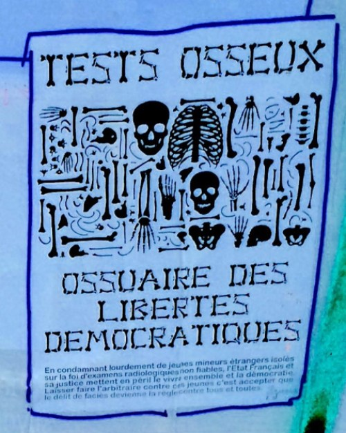 Photo of poster illustrating an ossuary of democratic freedoms
