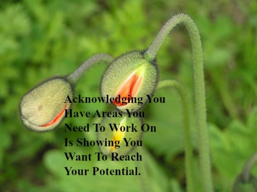 acknowledging-you-have-areas-you-need-to-work-on-is-showing-you-want-to-reach-your-potential