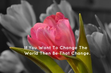 If You Want To Change The World Then Be That Change.
