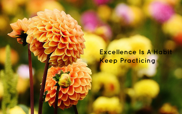 Excellence Is A Habit Keep Practicing