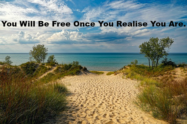You Will Be Free Once You Realise You Are.