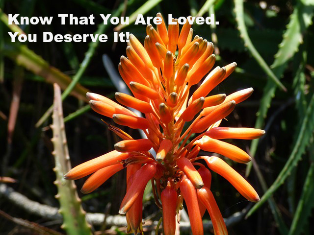 Know That You Are Loved. You Deserve It!