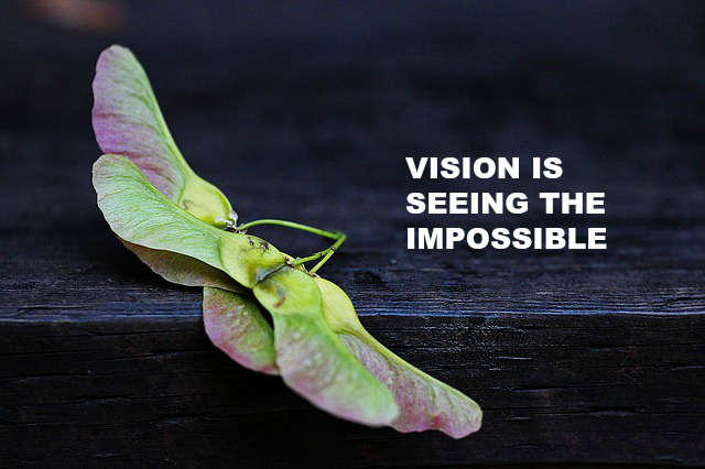 VISION IS SEEING THE IMPOSSIBLE