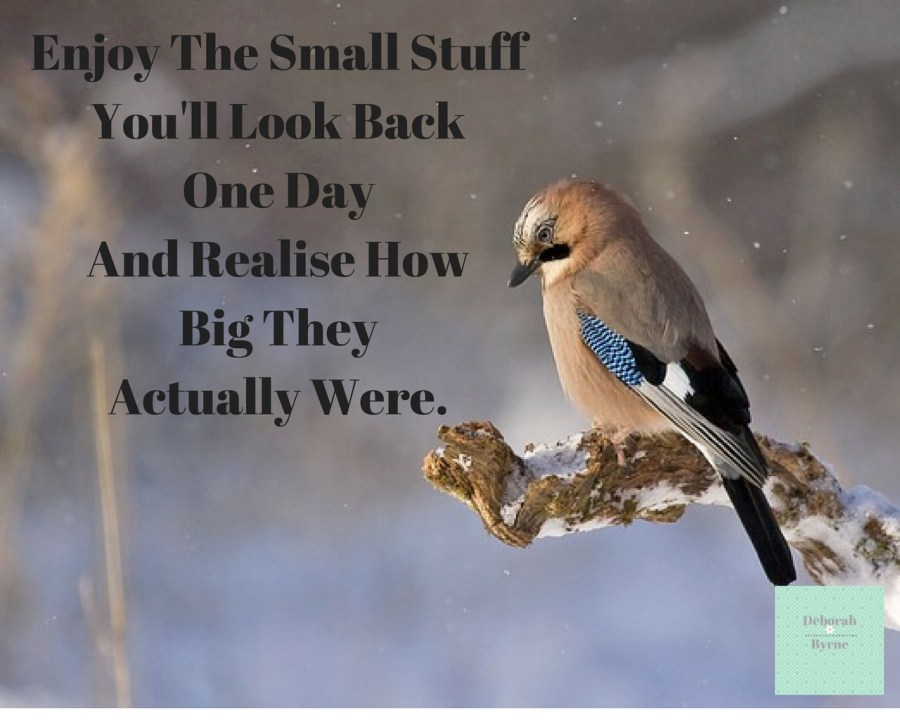 Enjoy The Small Stuff You'll Look Back One Day And Realise How BIg They Actually Were DBpsychology