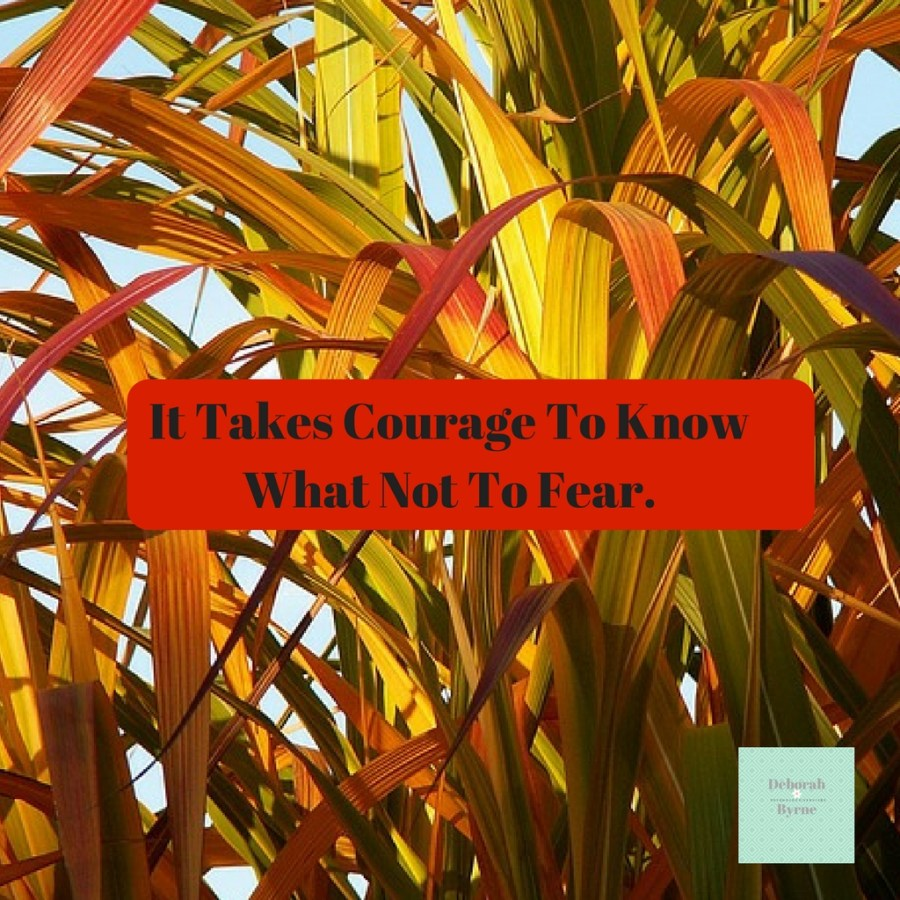 It Takes Courage To Now What Not To Fear DBpsychology 5