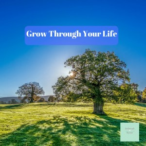 Grow Throught Your Life DBpsychology 18