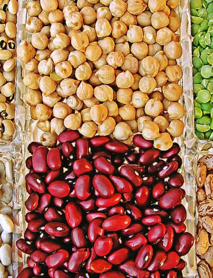 Dieta vegetariana: proteine animali e vegetali a confronto.