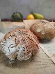 panini-alla-zucca