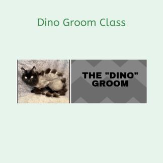 Deborah Hansen, CFMG, CFCG teaches The Dino Groom Class.
