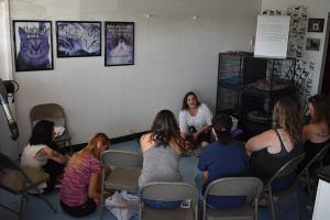 Deborah Hansen, CFMG, CFCG teaching a Creative Cat Grooming Workshop