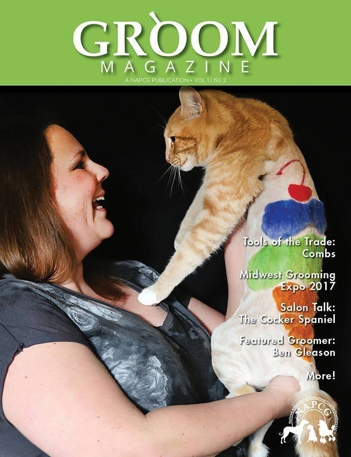 Ice Cream Cone Magazine Cover by Deborah Hansen, CFMG, CFCG, creative cat grooming