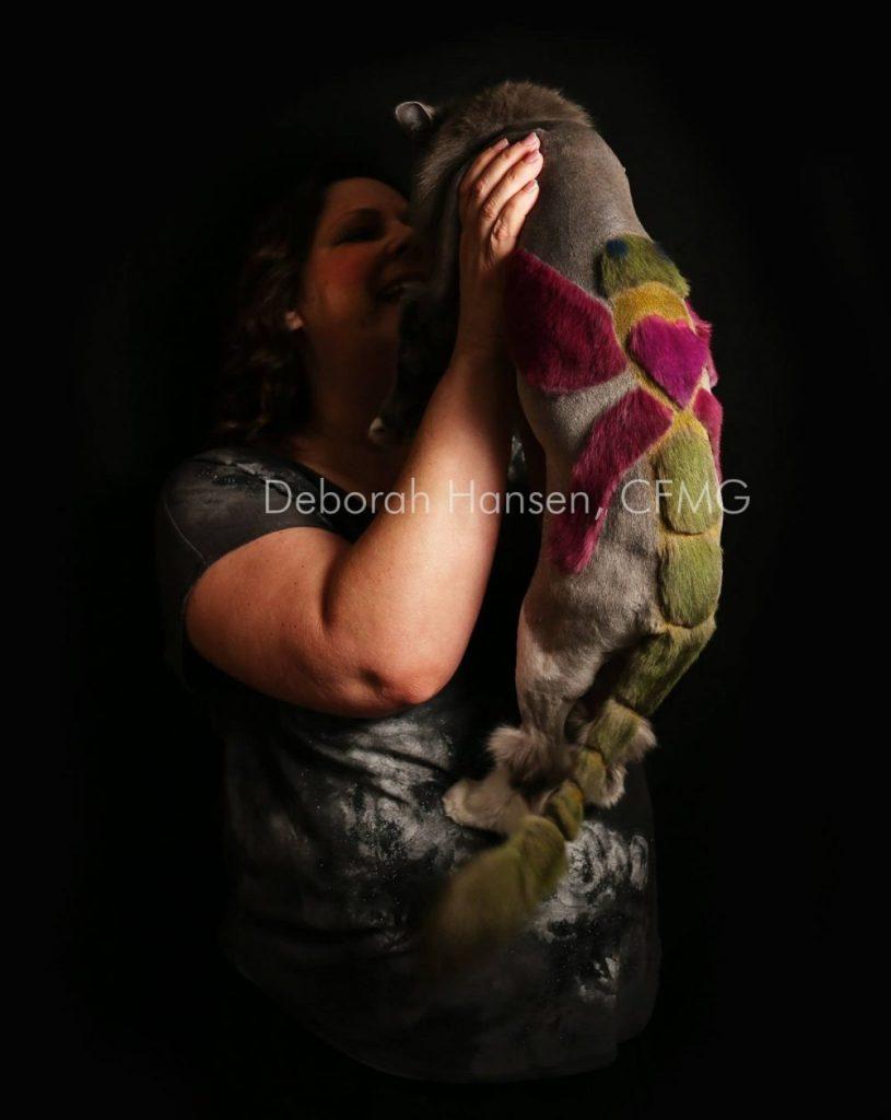 Dragonfly by Deborah Hansen, CFMG, CFCG, creative cat grooming