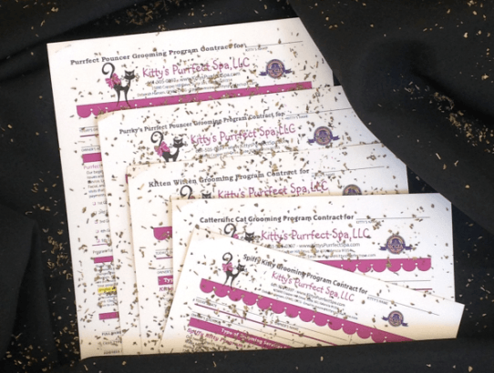 Rebooking Cat Grooming Programs, Customized Forms