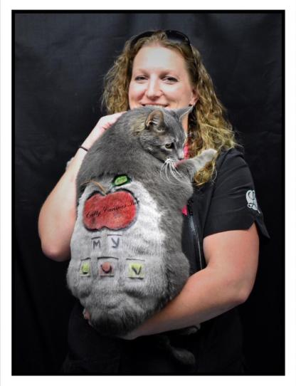 Creative Cat Grooming Student