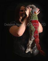 Christmas in July, by Deborah Hansen, CFMG, CFCG, creative cat grooming